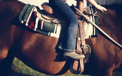 Horse Riding & Equine Therapy Benefits
