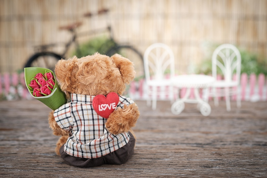 Valentine's Day - Space Coast Pet Services