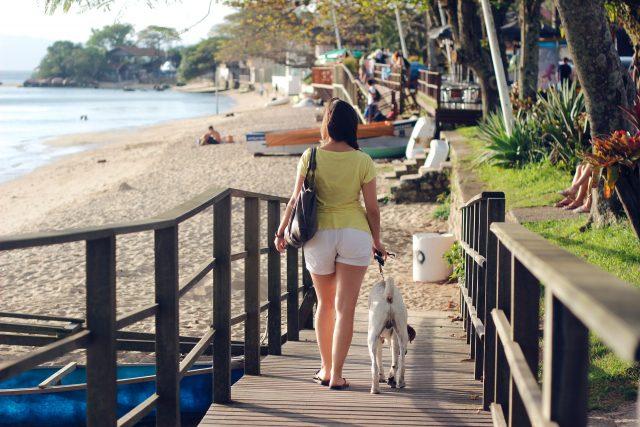 Canova Beach Dog Park Brevard County, FL