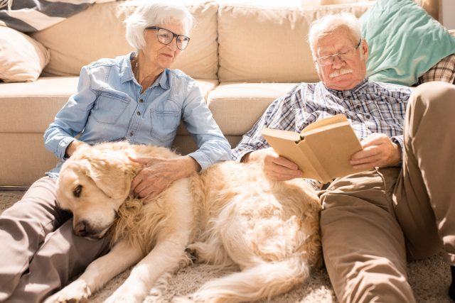 couple reading book with dog
