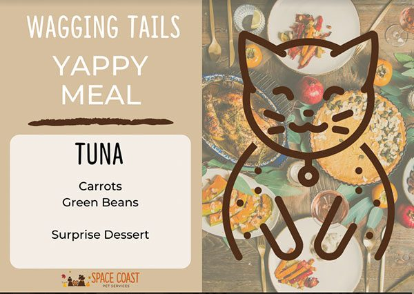 Yappy Meal Cats - Tuna 1