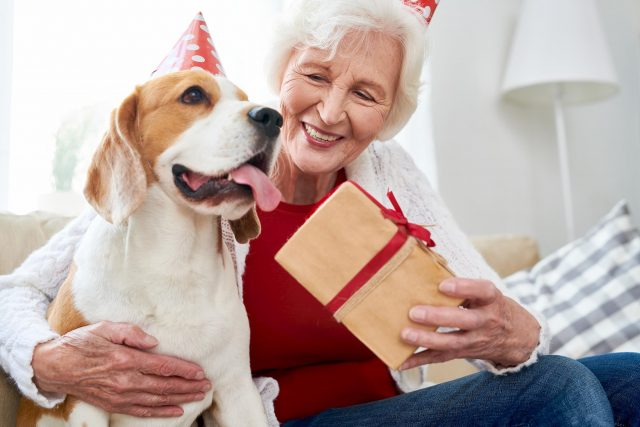 dog holiday gifts to make