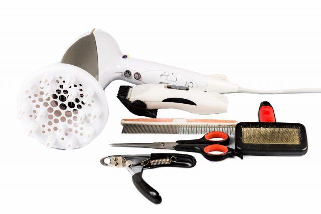 best pet grooming tools