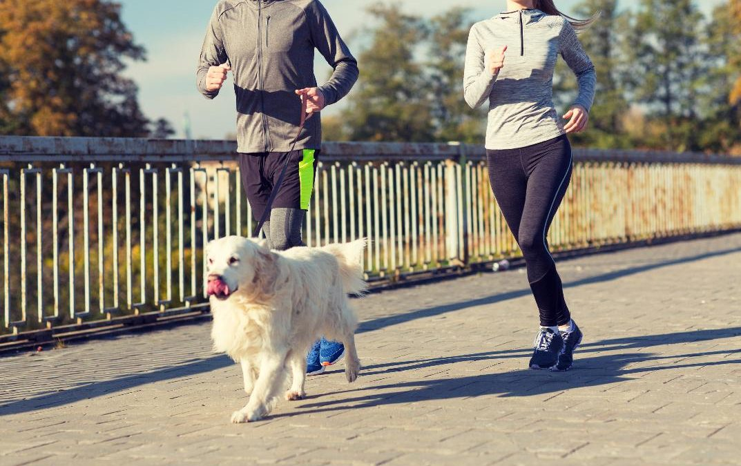 5 Ways Your Dog Can Help You Reach Your Health & Fitness Goals