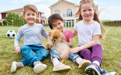 teaching your dog to interact with children
