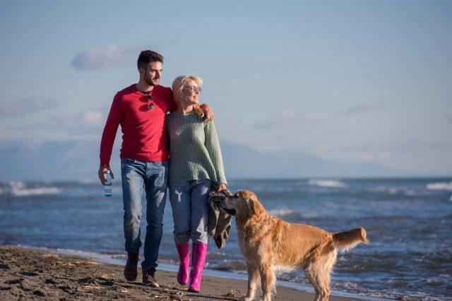 walking dog on beach brevard county fl