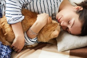 end of life care for cats