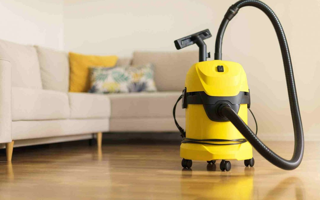The Best Vacuums for Pet Parents: A Complete Review