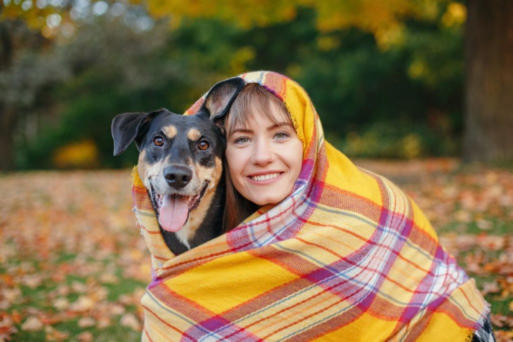 fall health and safety tips for pets