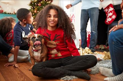 How to Have a Pet-Friendly Holiday Season