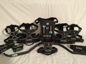 headlight-harness-discount